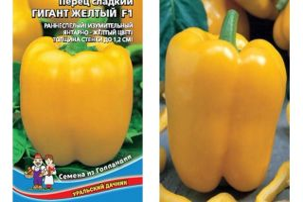 Перец гигант желтый f1: описание, фото, отзывы