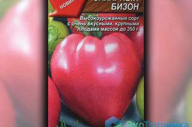 Томат сахарный бизон: характеристика и описание сорта