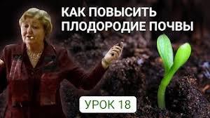 Пчелодар инструкция по применению